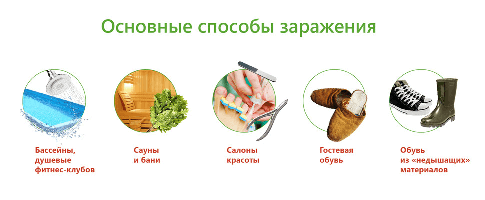 Экзолоцин Мазь
