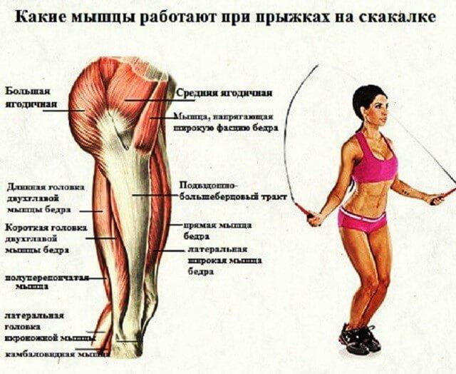 лучшие упражнения от целлюлита со скакалкой