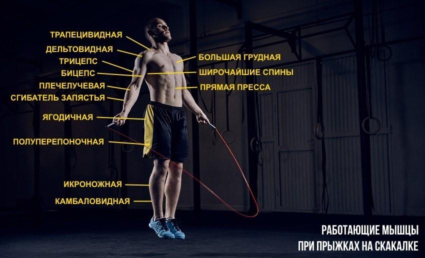 какие мышцы работают при прыжках со скакалкой